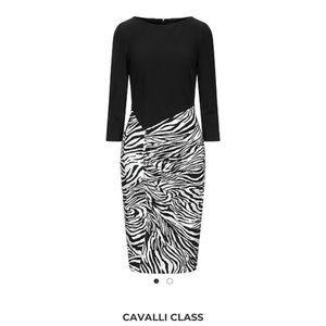 Cavalli Class Zebra Dress Punto Roma Print Zebra C